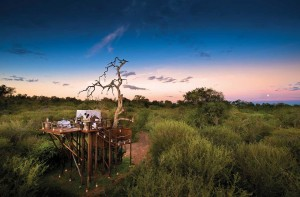 River_Treehouse-Chalkley Ivory Lodge - Lion Sands