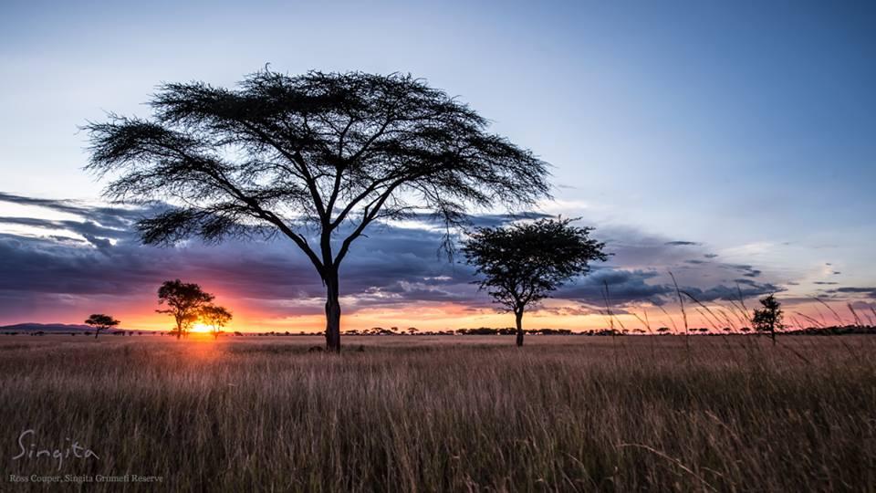 Tanzânia ♥ Tm Travel