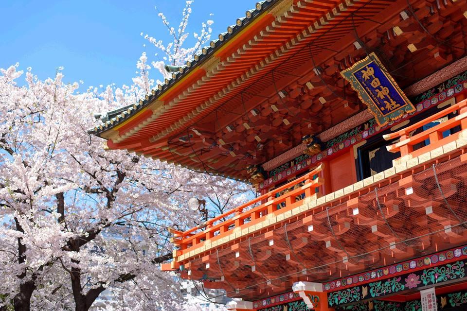 Tóquio ♥ Lua de Mel ♥ TM Travel