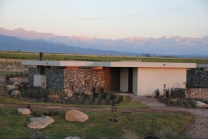 the-vines-of-mendoza-8
