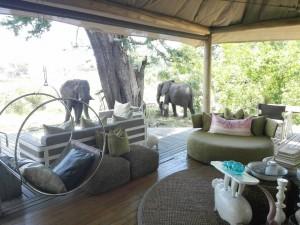 xaranna-okavango-delta-camp-6